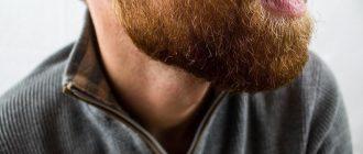 почему у мужчин растет борода